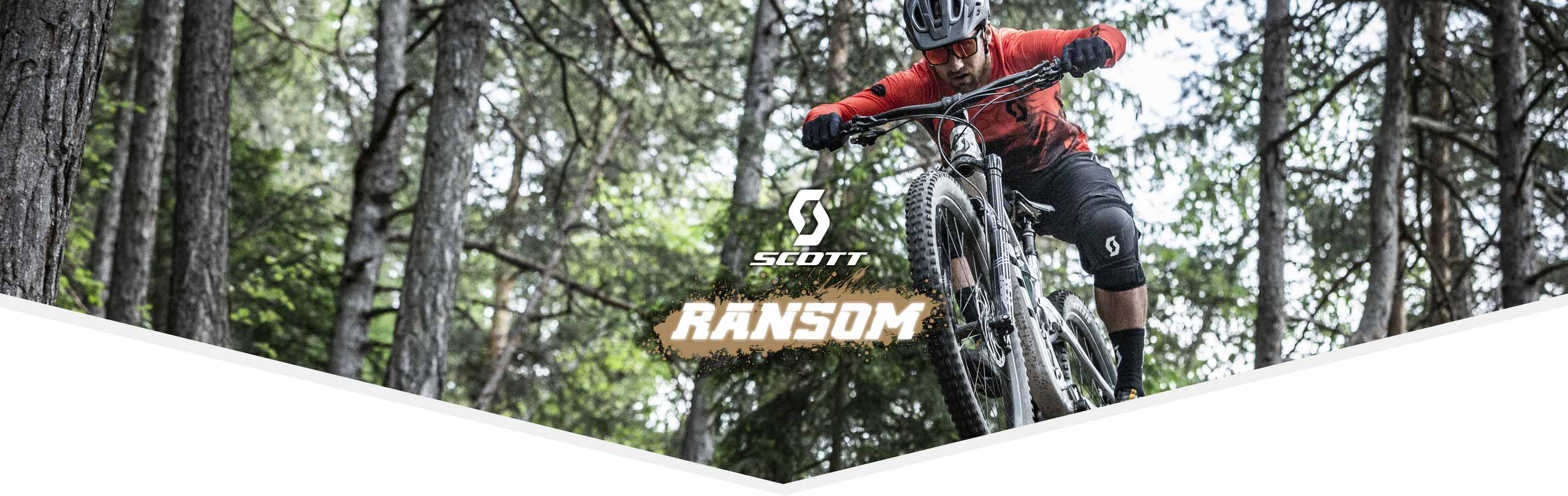 header Scott ransom 2020